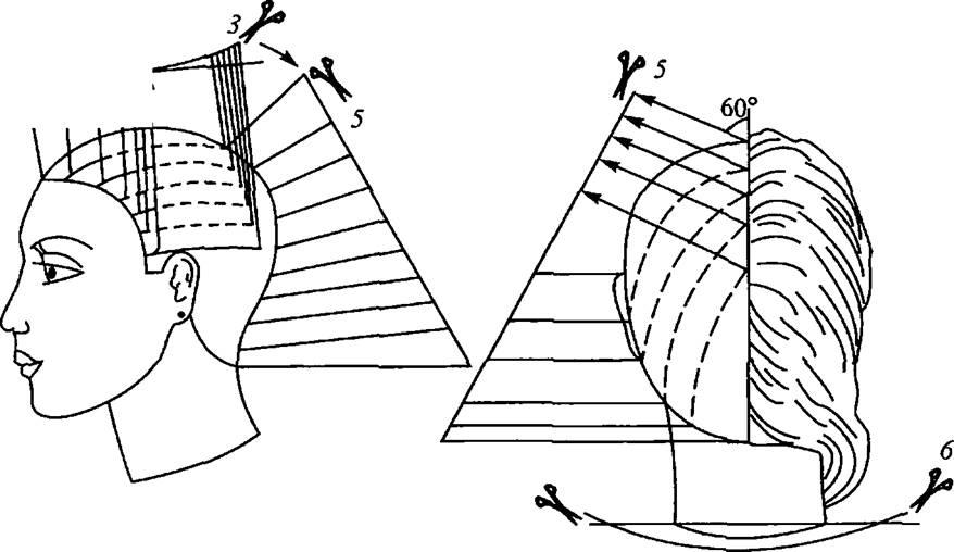 Схема стрижки Шегг