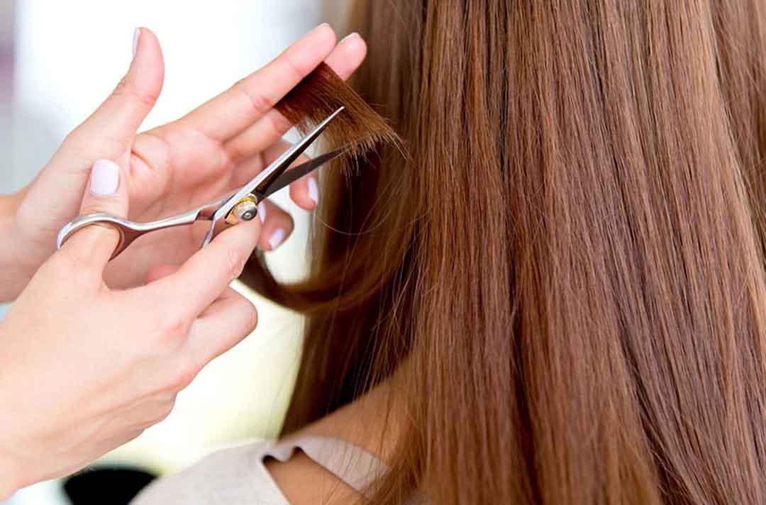 Процесс стрижки