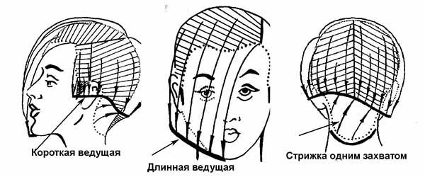 Схема ассиметричного каре с челкой